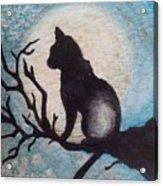 Moon Kitty Acrylic Print