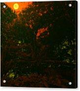 Moon Of Dark Night Acrylic Print