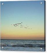 Moon Over Tybee Island Acrylic Print