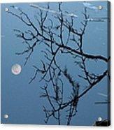 Moon Reflection Acrylic Print