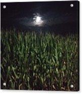 Moon Stalk Acrylic Print