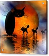 Mooncat's Catwalk Acrylic Print by Issabild -