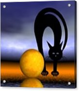 Mooncat's Play With The Fullmoon Acrylic Print by Issabild -