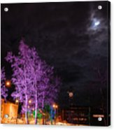 Moonlight And Colored Trees Acrylic Print