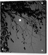 Moonlight - B And W Acrylic Print