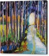 Moonlight Glimpse Acrylic Print