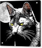 Moonlight Grays Acrylic Print