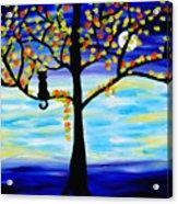 Moonlight Kitten Acrylic Print