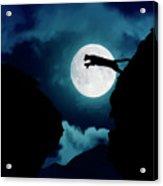 Moonlight Leap Acrylic Print
