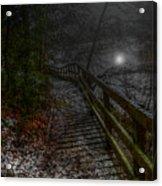 Moonlight On The River Bank Acrylic Print