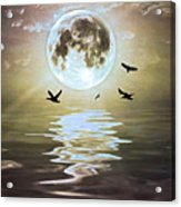 Moonlight On Water Acrylic Print