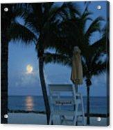 Moonlight Serenade Acrylic Print