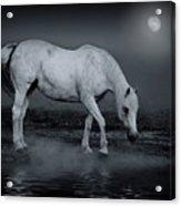 Moonlight Shadow Acrylic Print