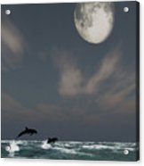 Moonlight Swim Acrylic Print