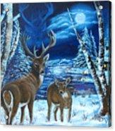 Moonlight Walk Acrylic Print