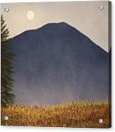 Moonlit Mountain Meadow Acrylic Print