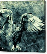 Moonlit Owl Acrylic Print