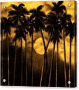 Moonlit Palm Trees In Yellow Acrylic Print