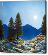Moonlit Trail Acrylic Print by Frank Wilson