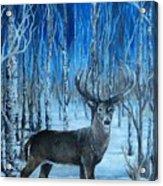 Moonlit Walk Acrylic Print