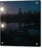 Moonlit Wetland Acrylic Print