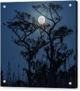 Moonrise Over Wetlands Acrylic Print