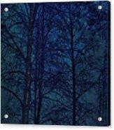 Moonshine 12 Blue Sky Acrylic Print
