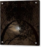 Moonshine 14 The Trees Acrylic Print