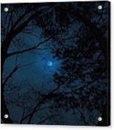 Moonshine 16 The Trees Acrylic Print
