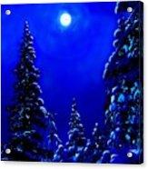 Moonshine On Snowy Pine Acrylic Print