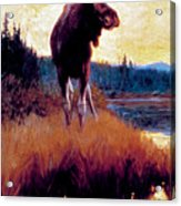 Moose Against Skyline Acrylic Print