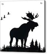 Moose Nature Acrylic Print