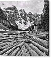 Moraine Lake Driftwood No 1 Acrylic Print
