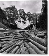 Moraine Lake Driftwood No 2 Acrylic Print