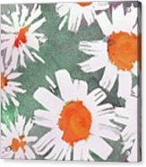 More Bunch Of Daisies Acrylic Print