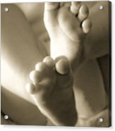 More Little Feet Acrylic Print by Mamie Thornbrue