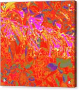 More Night Bloomers 8 Acrylic Print