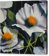 More Poppies Acrylic Print