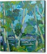 Moria River At Belleville Acrylic Print