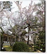 Morning At Horyu-ji Temple Acrylic Print