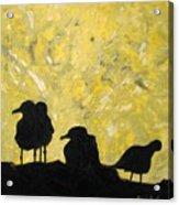 Morning Birds Acrylic Print
