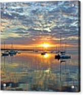 Morning Bliss Acrylic Print