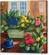 Morning Coffee Acrylic Print by Dana Redfern