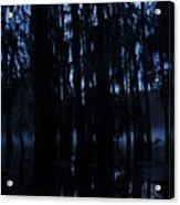 Morning Cypress Mist Acrylic Print