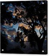 Morning Dragon Acrylic Print
