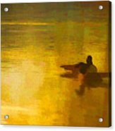 Morning Ducks Acrylic Print
