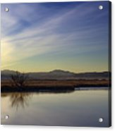Morning Enters With A Whisper Acrylic Print