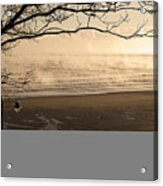 Morning Filey Beach Acrylic Print