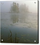 Morning Fog At Harvard Pond Acrylic Print