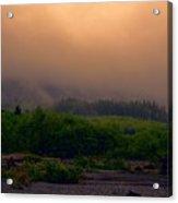 Morning Fog In Olympic National Park Acrylic Print